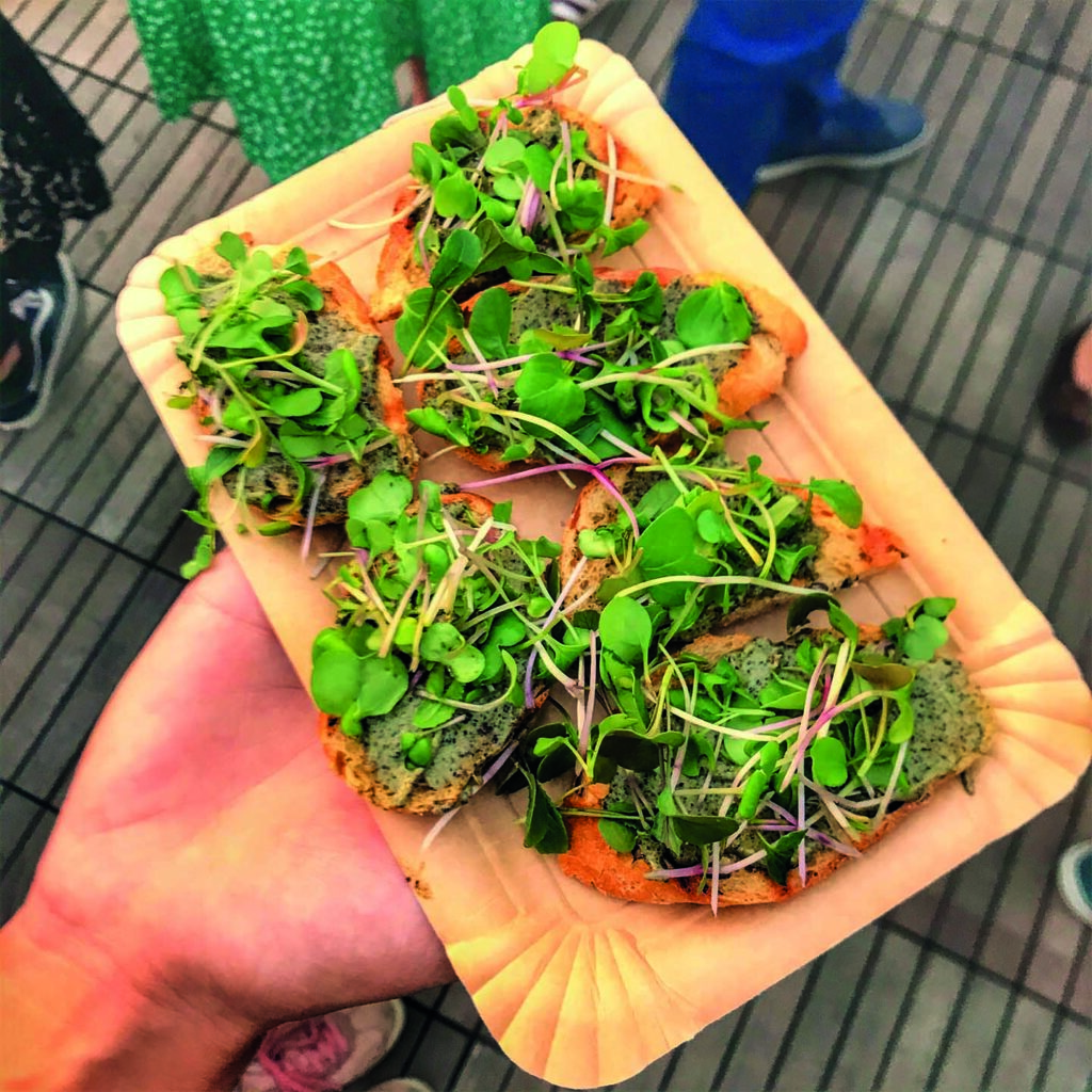 Urban farm solutions Hempy pesto snack